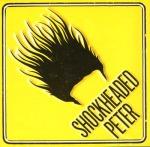 shockheadedpetertigerlillies